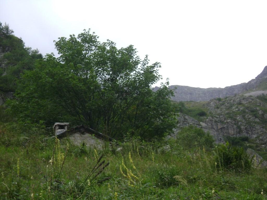 La cabane de berger dans une zone d'étive
